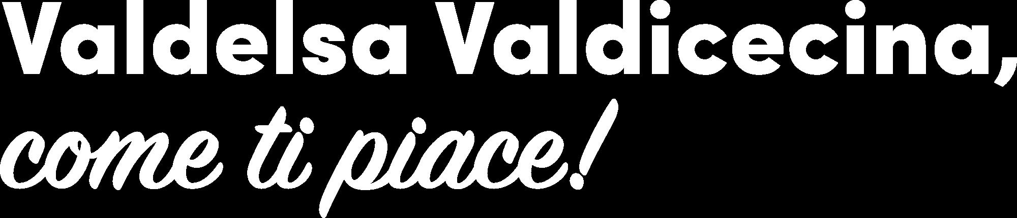 VEV-ctp-logo