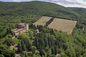 04_Campagna_CastelloFosini_Radicondoli_ValDElsa_web